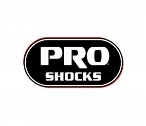 WEB_Pro_Logo_OnWhite